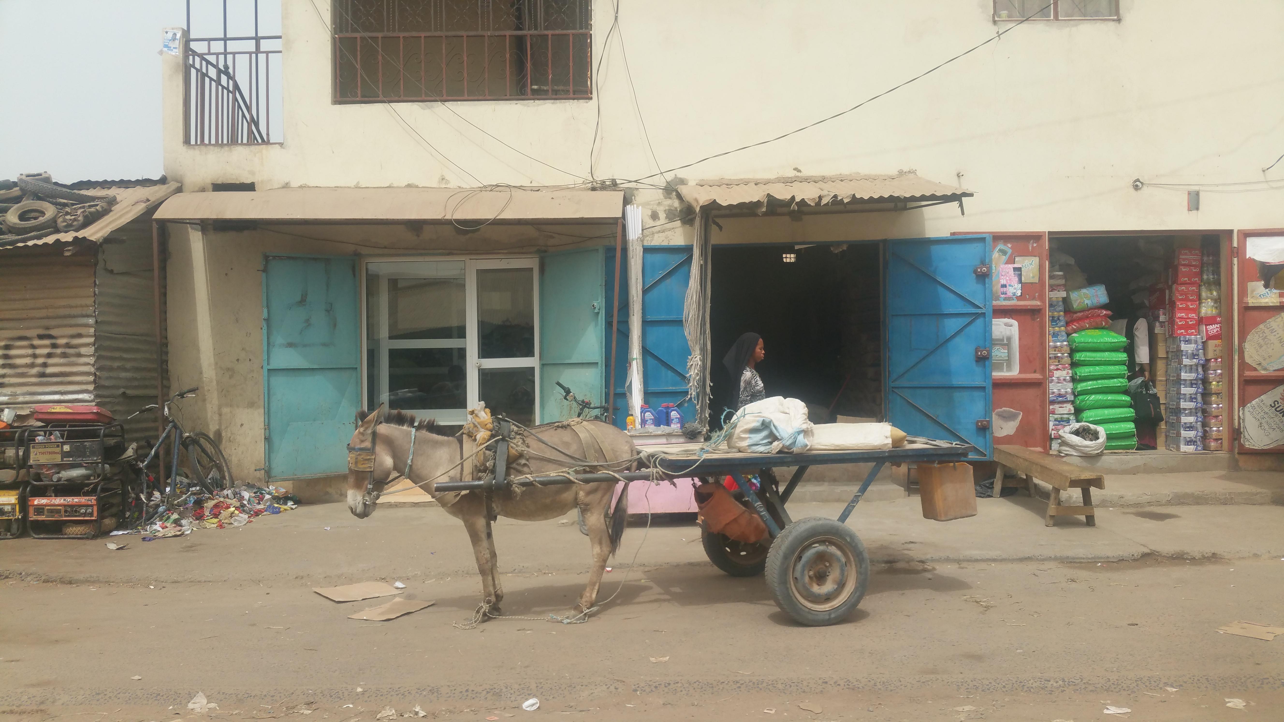 Reis-Nothilfe in der Corona-Krise – konkret und direkt…